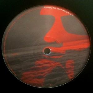 CTP01-Vinyl-B