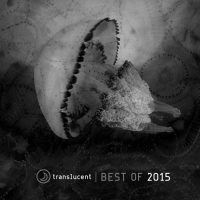 'Robot Funk' included on Translucent – Best of 2015